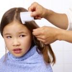 shampoing-poux